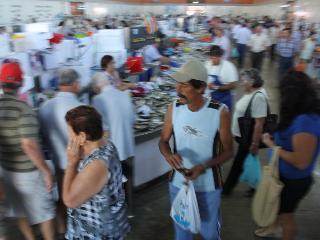Best fish-market ever?!  2 minutes walk away.