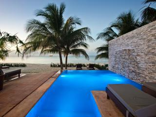 Private & Luxurious Villa on Beach!  NEW TO MARKET