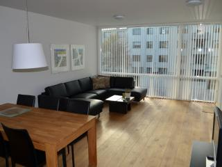 Luxury 2 room apartment in the center of Reykjavik
