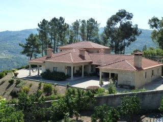 Douro Mansion - Awesome View - Relaxing Holidays, Resende