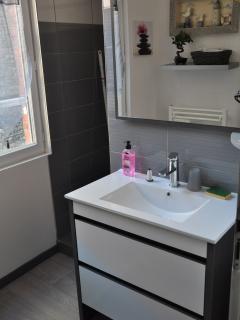 meuble vasque , grand miroir , linge de toilette fourni .