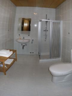 Spacious modern en-suite