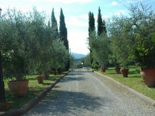 Azienda Agricola Melograno1, Montecarlo