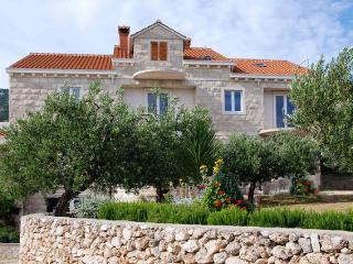 Villa Franka Bol Brac - Ap1 (Murva)