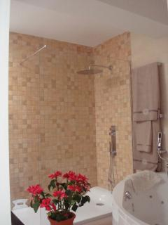 Power shower in main double bedroom