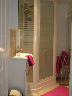 ensuite bathroom. basin, shower, separate toilet