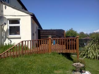 Decking at Merlin House