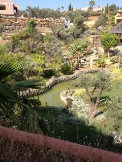 stunning garden and pond