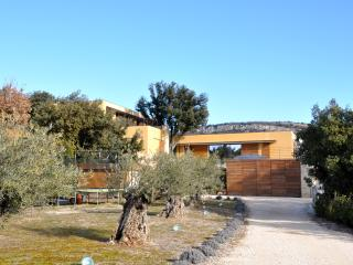 View From The Front With Gardens And Olive Trees