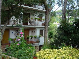 Tamariu - Lovely apartment in a small cove
