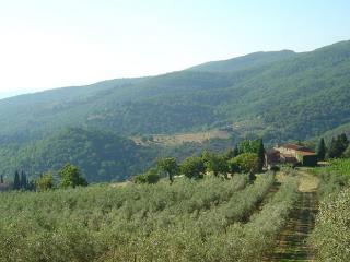 Villa in Greve, Tuscany, Italy, Greve in Chianti