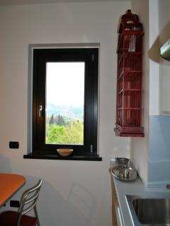 Window towards Città alta