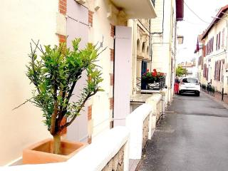 Excellent 2-room apartment with terrace, Biarritz