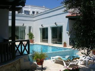 446-Private Pool Villa in Yalikavak With Garden