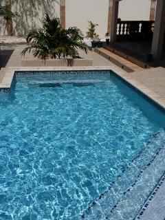 Your very own private pool, with steps, low end, deep end, jetted bench seat, waterfall & swim-up bar