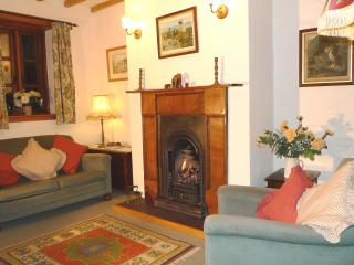 Cosy sitting room with coal effect gas fire comfy sofas & chairs TV DVD video CD radio books &am