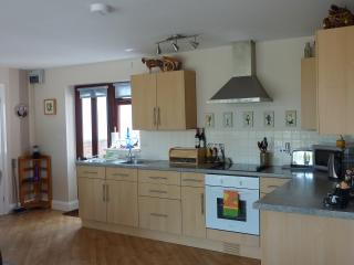 Bright open plan well kitted out kitchen