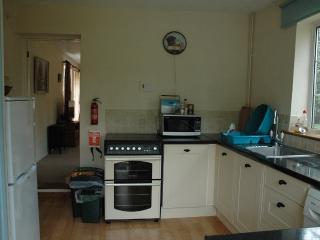 Kitchen showing cooker, sink, and fridge/freezer