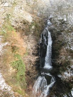 A winter walk in the Black Spout woods on the edge of Pitlochry