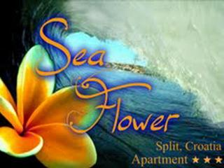 Sea Flower -with parking place