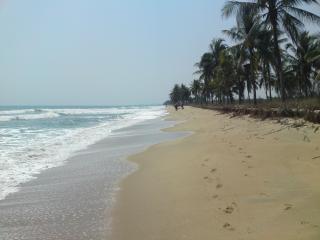 The fantastic beach