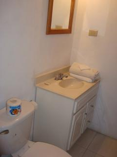 Room # 2 bathroom, toilet, sink and a shower
