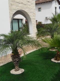 Rear Garden and terrace area