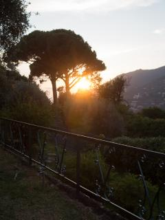 Sunset at the terrace