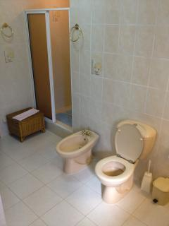 Large bathroom with bath and double shower