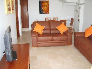 lounge with 2 leather sofas