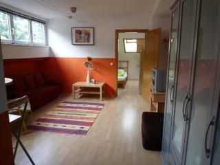 Modern one bedroom apartment near lake and ski lifts sleeps up to 5 persons.