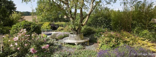 One of the two circular tree seats to enjoy your morning coffee sitting under the walnut trees
