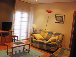 Apartment 8 p 5 min beach WIFI, San Sebastián - Donostia