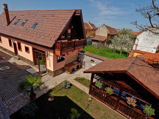 Ambient Villa, Brasov
