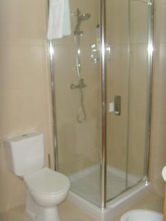 Shower room for the twin bedroom (ground floor)