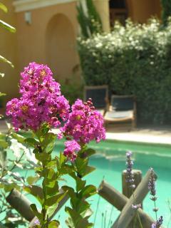 piscine jade