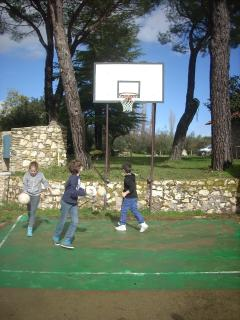 campo tiro basket