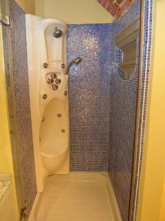 Bathroom with shower detail