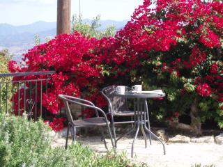 secluded corner of garden