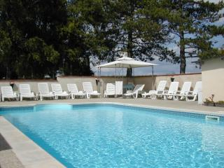 Le Grand Bois~Vieille Etable ; 3* rated comfort with pool for up to 12 persons.