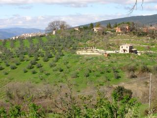 View of property from across the valley