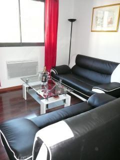 Salon deux canapés, Télévision grand écran plat, lecteur DVD,CD,WIFI gratuit