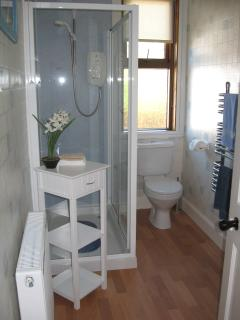 Shower room with large shower cubicle, toilet and handbasin