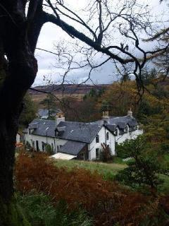 Achnadrish house from the woods