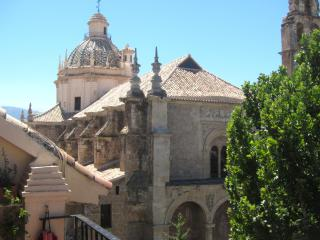 APART. CENTRO CERCA DE LA ALHAMBRA, Granada