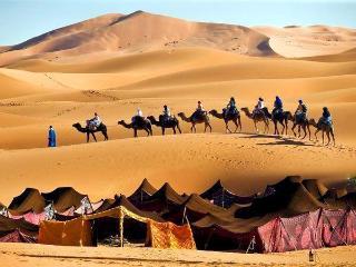 Camel trek bivouac, Meknes