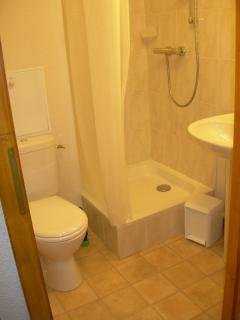 Shower room with shower, sink and toilet