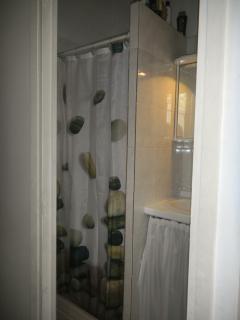 Master bedroom shower and sink