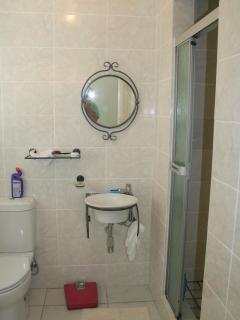 En suite shower-room and WC