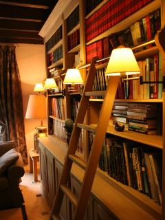 The library in the TV room